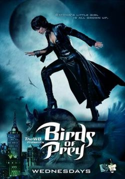 Хищные пташки — Birds of Prey (2002)